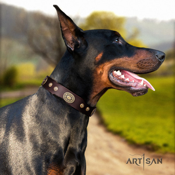 Doberman convenient full grain leather collar with studs for your doggie