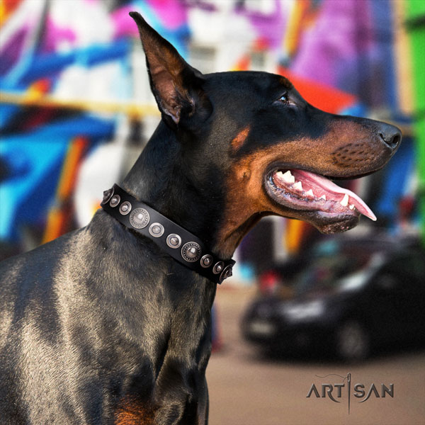 Doberman inimitable full grain genuine leather collar with decorations for your four-legged friend