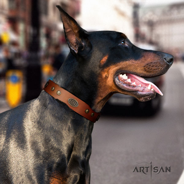 Doberman awesome full grain natural leather collar with embellishments for your four-legged friend