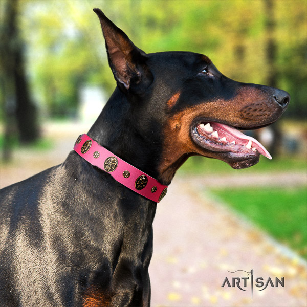 Doberman everyday walking leather dog collar with studs