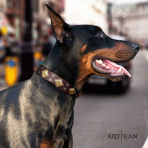 Doberman significant leather collar with adornments for your doggie