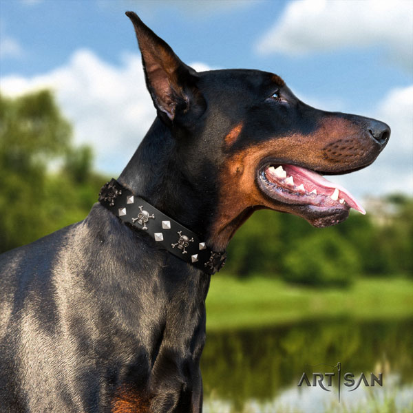Doberman easy adjustable full grain genuine leather collar with decorations for your four-legged friend
