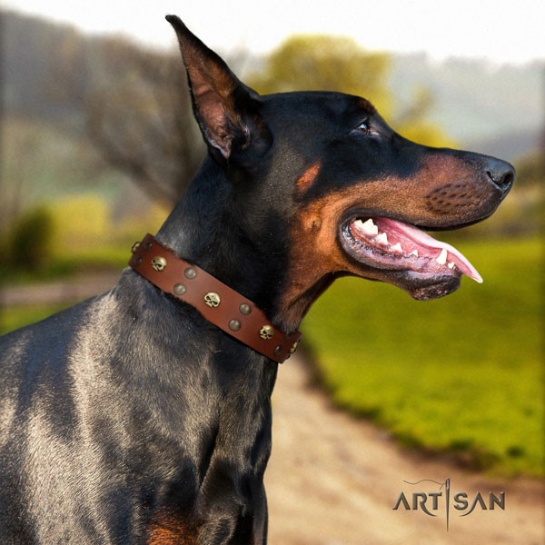Doberman stylish leather collar with adornments for your canine
