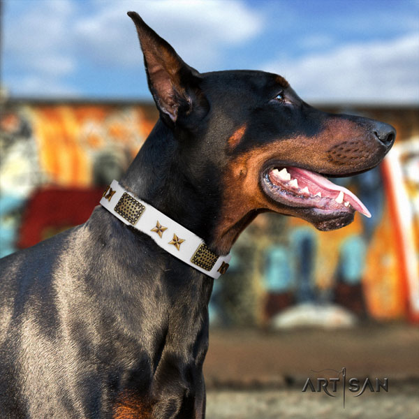 Doberman stunning full grain leather collar with studs for your canine