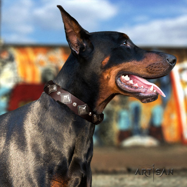 Doberman fashionable leather collar with embellishments for your canine