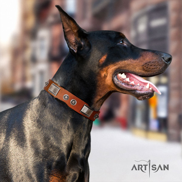 Doberman extraordinary natural genuine leather collar with embellishments for your dog