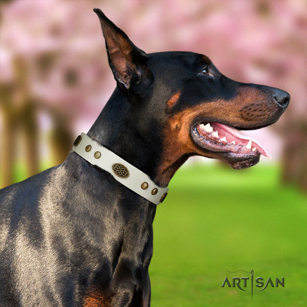 Doberman stunning full grain natural leather collar with adornments for your doggie