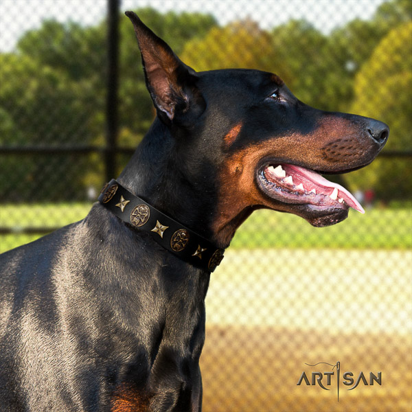 Doberman handy use full grain leather dog collar with adornments