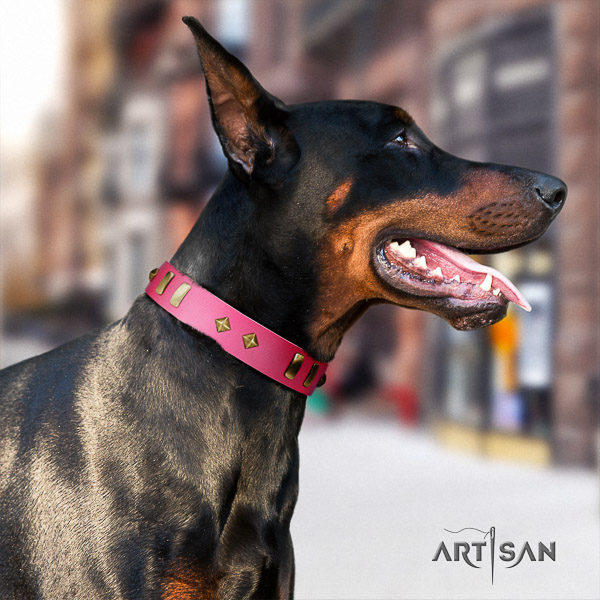 Doberman daily use full grain natural leather dog collar with embellishments