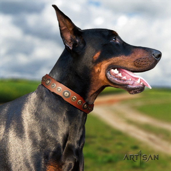 Doberman impressive genuine leather collar with adornments for your four-legged friend