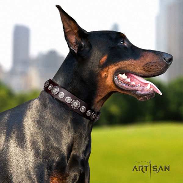 Doberman stunning natural genuine leather collar with studs for your dog