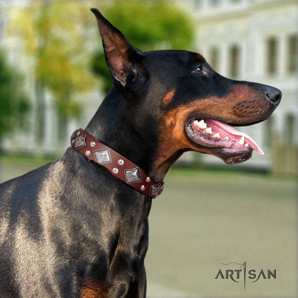 Doberman awesome genuine leather collar with adornments for your pet