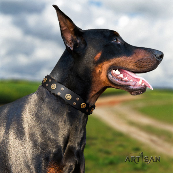 Doberman incredible full grain leather collar with adornments for your pet