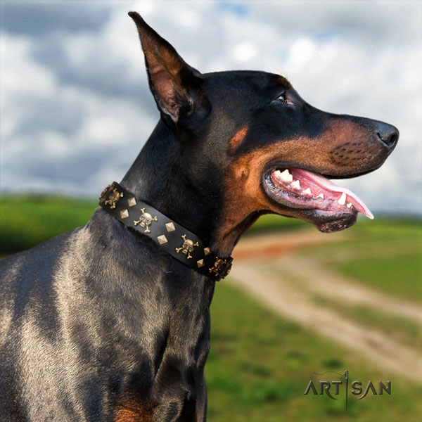 Doberman easy to adjust full grain genuine leather collar with embellishments for your doggie