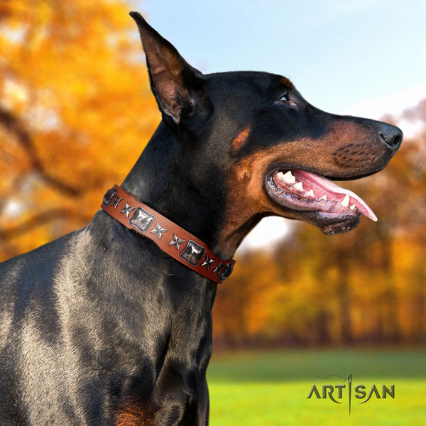 Doberman exceptional full grain genuine leather collar with studs for your four-legged friend