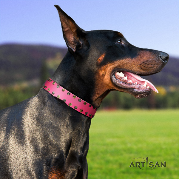 Doberman easy wearing genuine leather dog collar with embellishments
