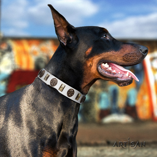Doberman daily walking leather dog collar with embellishments