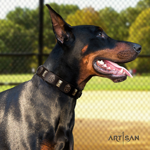 Doberman everyday use full grain leather dog collar with embellishments