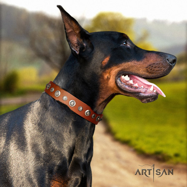Doberman inimitable full grain leather collar with adornments for your doggie