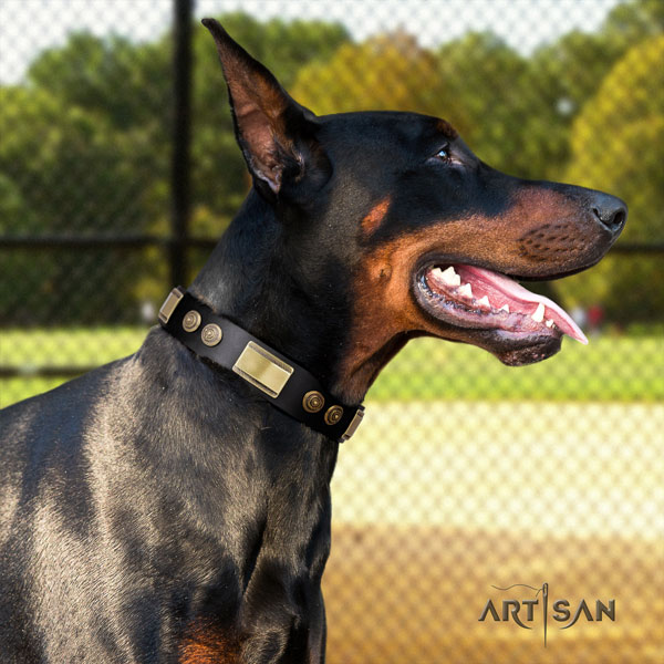 Doberman exceptional full grain leather collar with studs for your pet