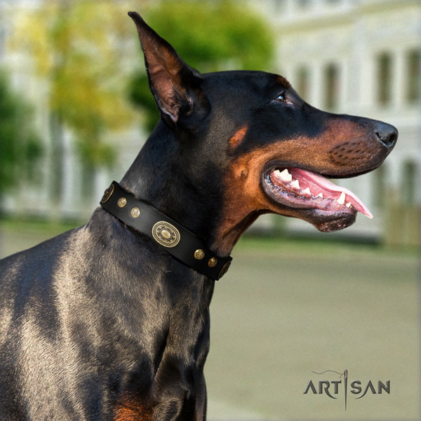 Doberman adjustable full grain genuine leather collar with adornments for your pet
