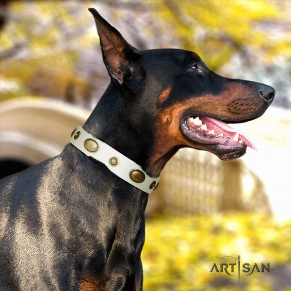 Doberman top notch full grain genuine leather collar with adornments for your dog