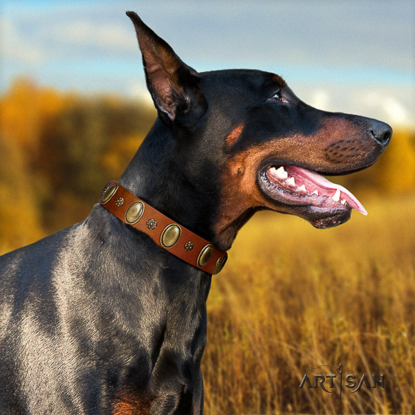 Doberman walking natural genuine leather dog collar with adornments