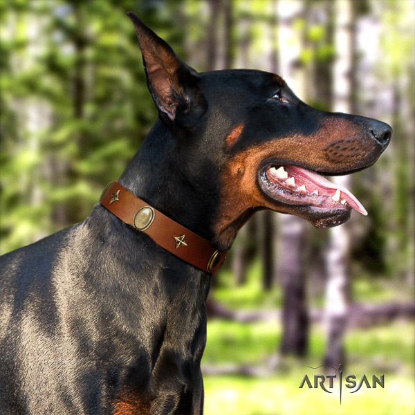 Doberman daily walking leather dog collar with adornments