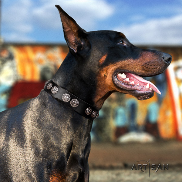 Doberman leather dog collar with decorations for easy wearing