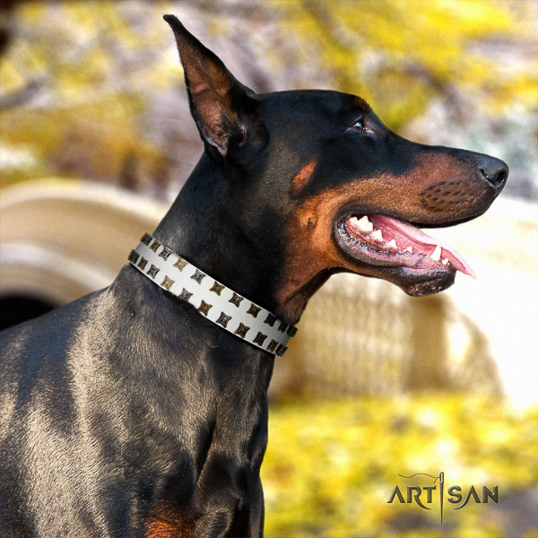 Doberman comfy wearing natural genuine leather dog collar with adornments