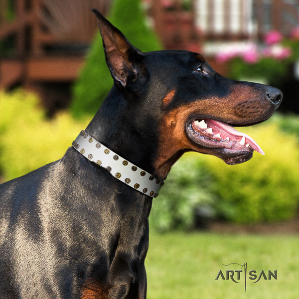 Doberman everyday walking natural genuine leather dog collar with adornments