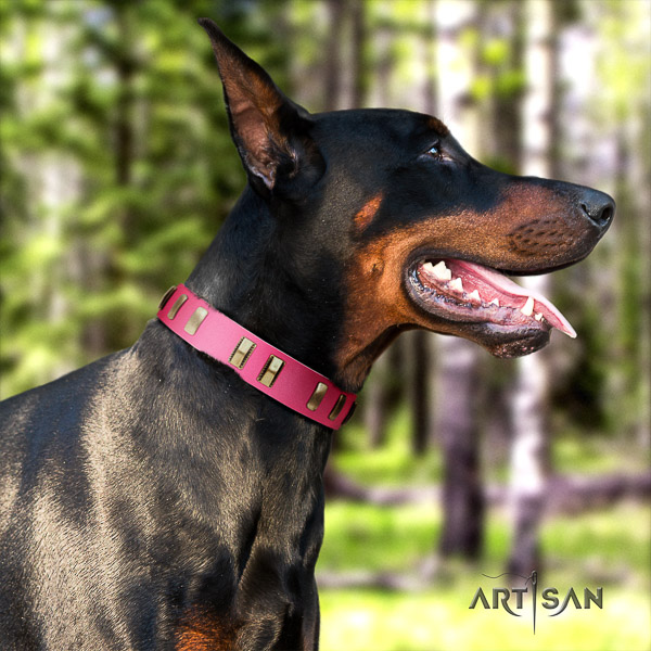 Doberman comfortable wearing natural genuine leather dog collar with adornments