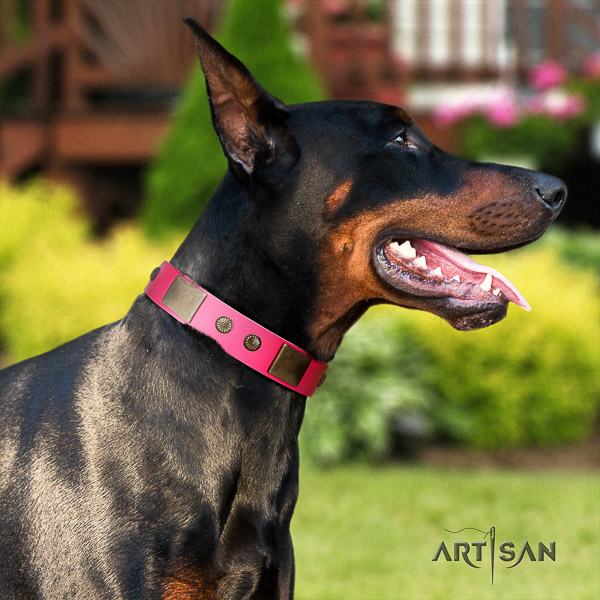 Doberman easy wearing leather dog collar with decorations
