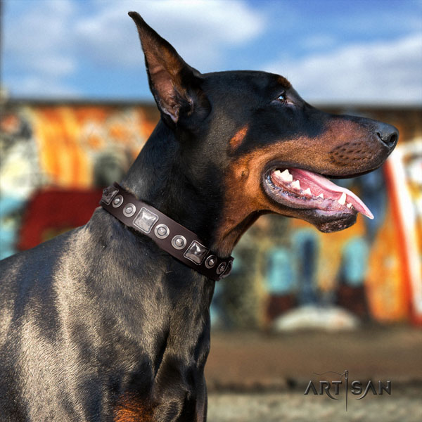 Doberman top notch full grain natural leather collar with adornments for your four-legged friend