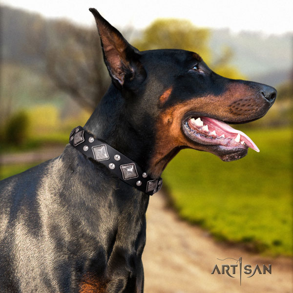 Doberman best quality full grain leather collar with adornments for your canine
