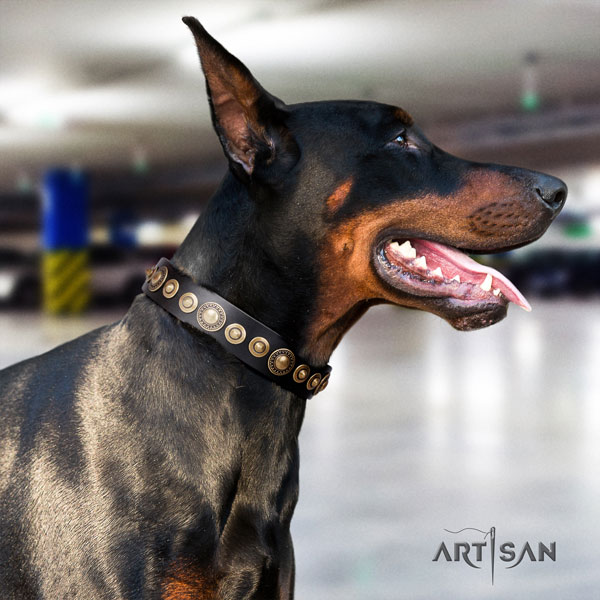 Doberman incredible full grain leather collar with decorations for your pet