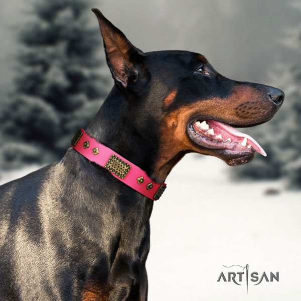 Doberman handcrafted leather collar with adornments for your canine