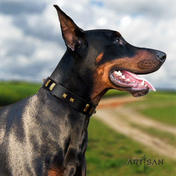 Doberman comfy wearing full grain leather dog collar with adornments