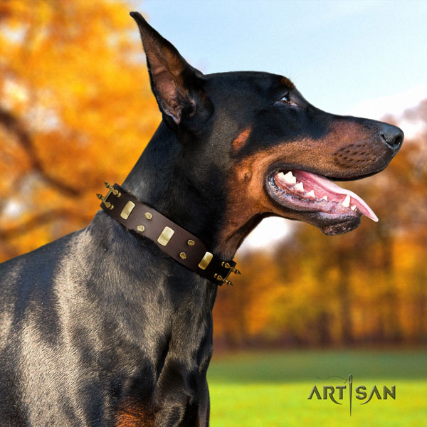 Doberman unusual genuine leather collar with adornments for your canine