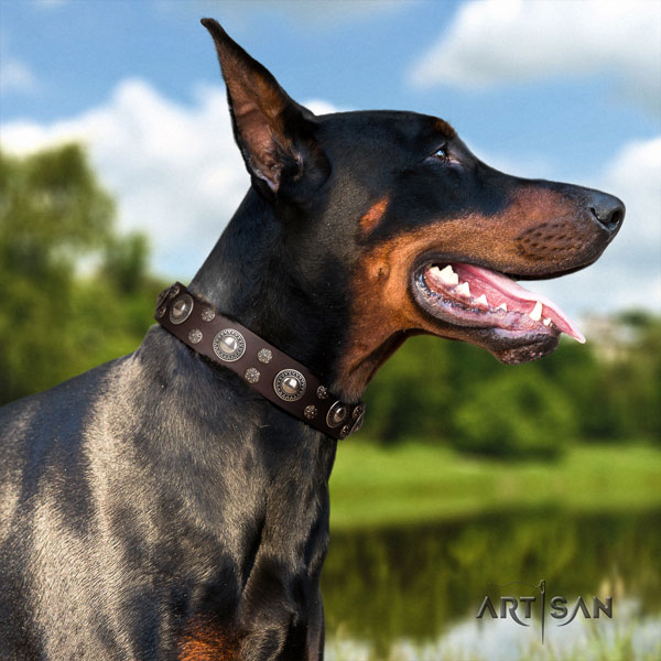 Doberman perfect fit genuine leather collar with adornments for your doggie