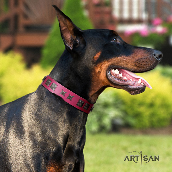 Doberman leather dog collar with studs for your stylish canine