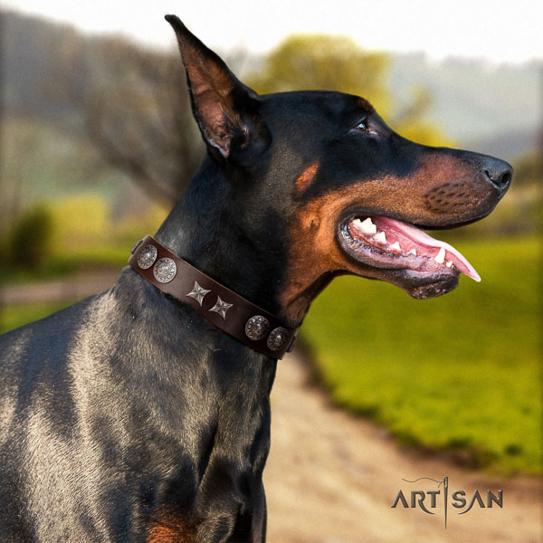Doberman full grain genuine leather dog collar with embellishments for your stylish doggie