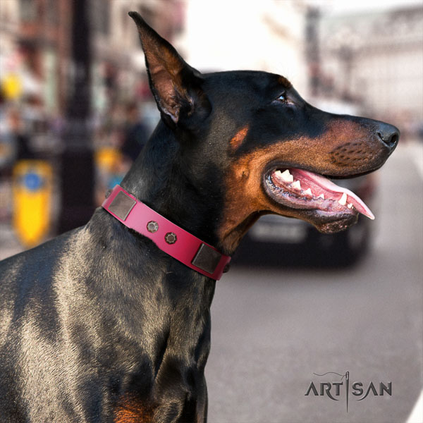 Doberman natural genuine leather dog collar with decorations for your lovely four-legged friend