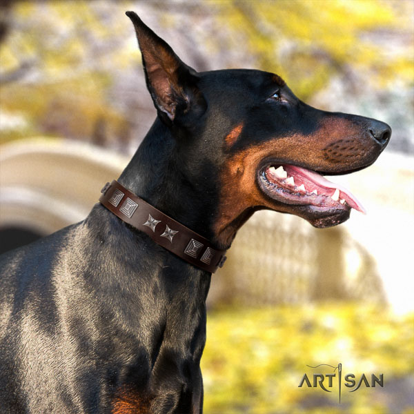 Doberman full grain natural leather dog collar with embellishments for your handsome dog