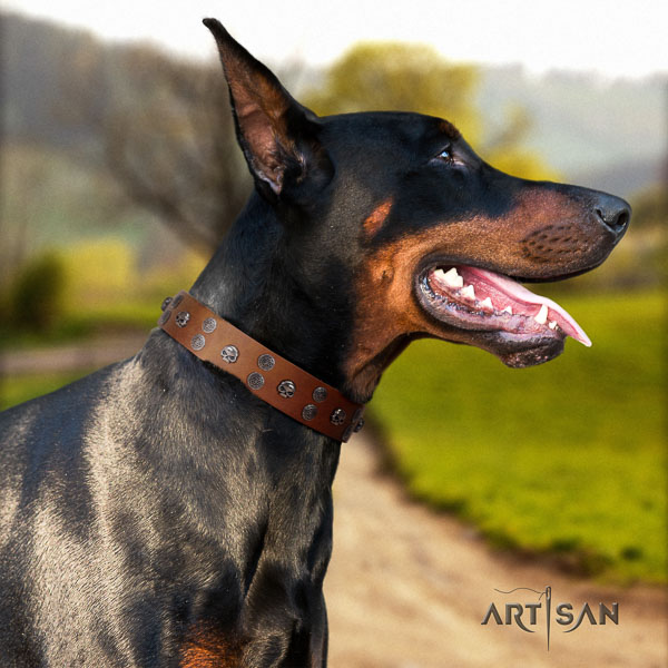 Doberman natural genuine leather dog collar with embellishments for your impressive dog