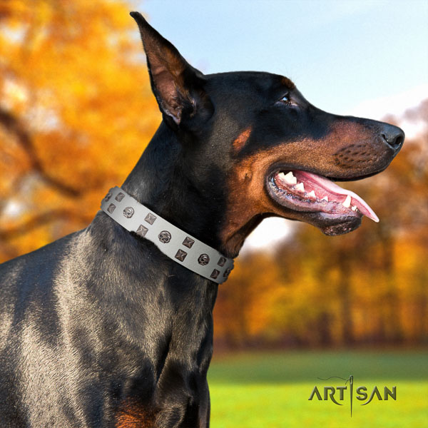Doberman genuine leather dog collar with adornments for your stylish doggie