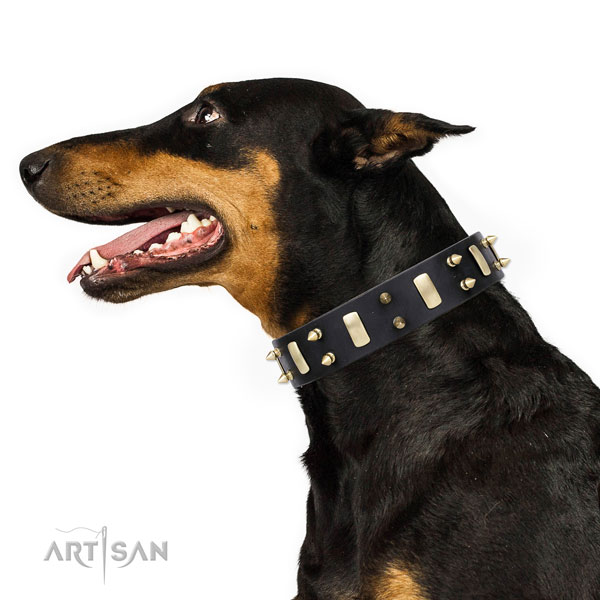 Doberman significant natural genuine leather dog collar for daily walking