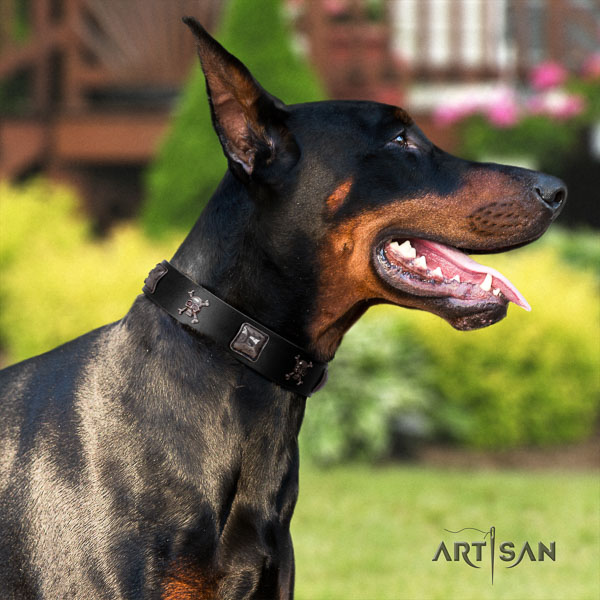 Doberman natural genuine leather dog collar with adornments for your handsome pet