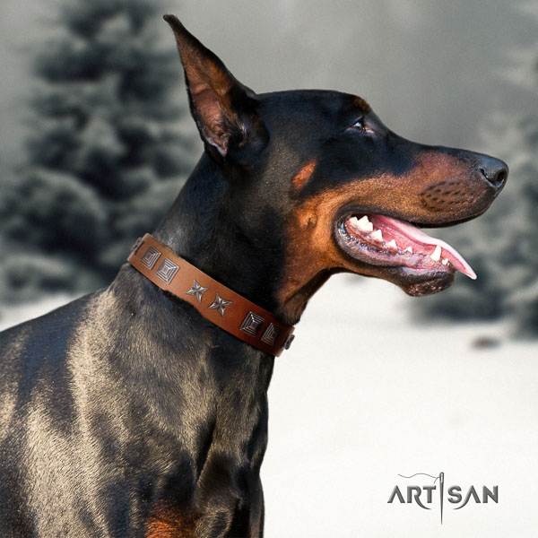 Doberman full grain natural leather dog collar with studs for your stylish doggie