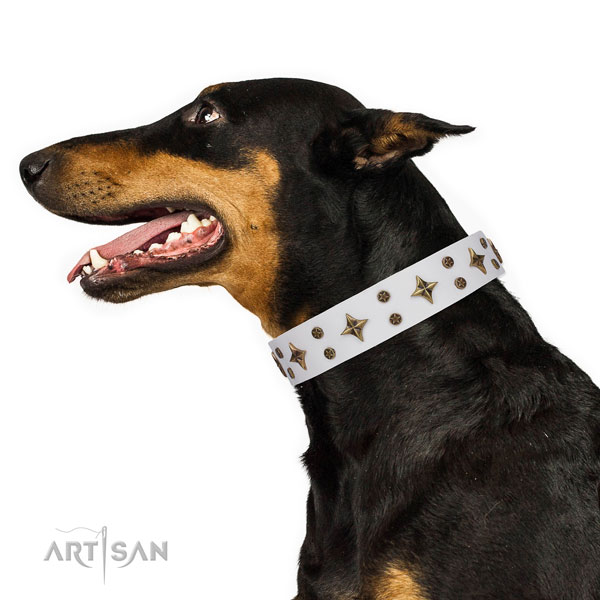 Doberman top quality full grain genuine leather dog collar for everyday use